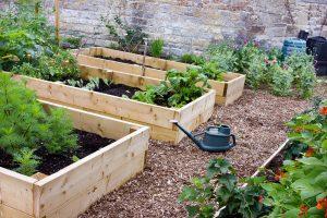 Raised flower beds in the garden